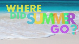where did summer go_graphic