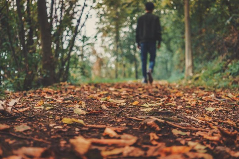 Seven Things To Do in the Fall in East Texas
