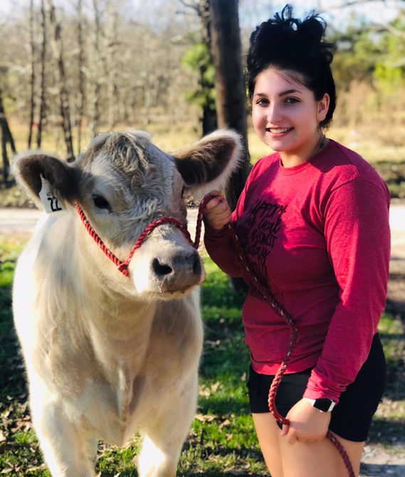 Meet Huntington's Caley Choate and her Steer Show Feature, Buddy!