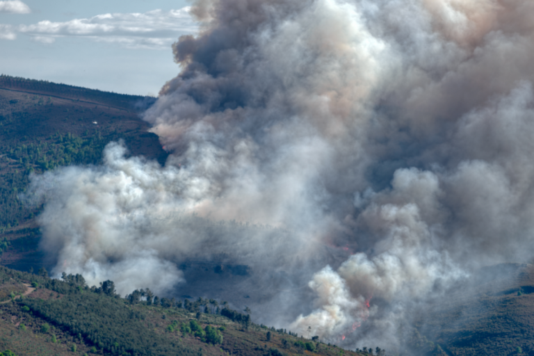 Texas A&M Forest Service urges citizens to prepare their communities for wildfire season