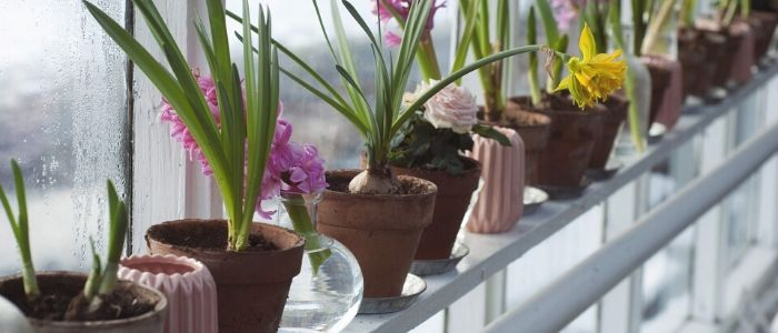 4 Home Maintenance Tips to Keep the Outdoors Outside