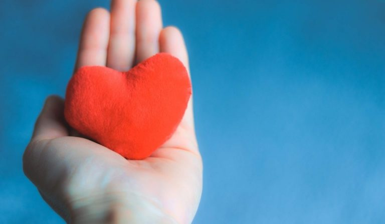 Share the Love this National Donor Day